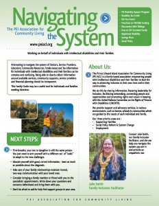 Navigating the System - The Family Guide